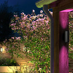 Philips | Philips Hue Outdoor Appear wandlamp - White & Color