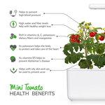Click & Grow Refill Mini Tomaatje 3-pack