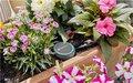 Gardena | Smart Water Control | Bodemvochtigheidssensor